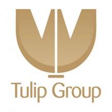 Tulip Group Pattaya Thailand