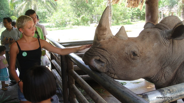 Khao Kheow Open Zoo, A 30 minute drive from Pattaya